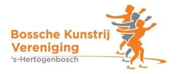 Bossche Kunstrij Vereniging